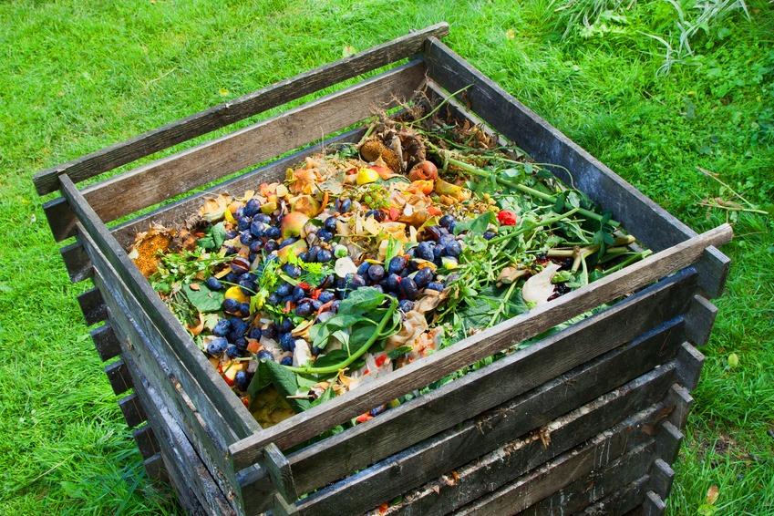 ¿Cómo hacer compost en casa?