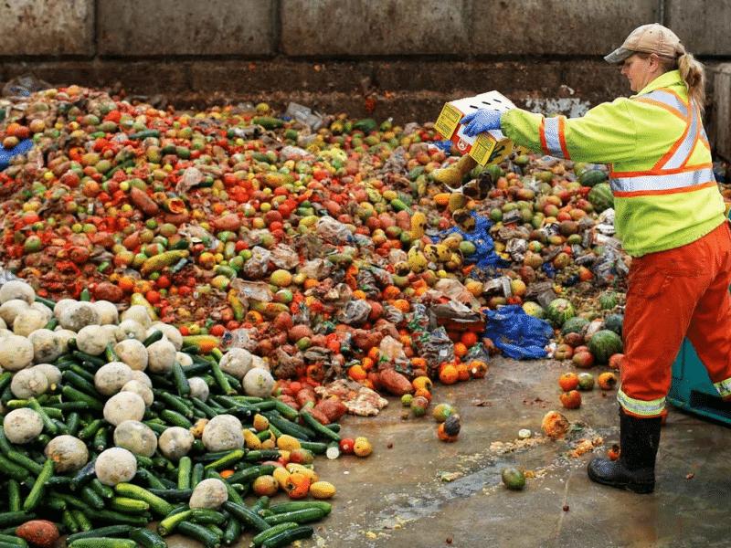 Mil millones de toneladas de alimentos se desperdician al año